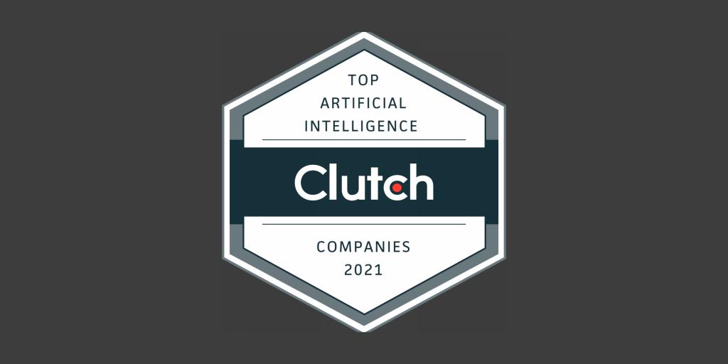 custom AI solutions development
